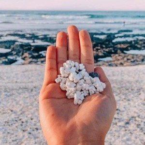 Pantai dengan Pasir Mirip Popcorn di Kepulauan Canary Fakta Unik Popcorn Beach